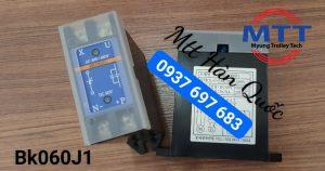 Diot bk-060J1 dành cho cầu trục, palang , tời điện